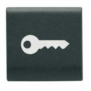 INTERCHANGEABLE BUTTON KEY - 22X22mm - KEY - BLACK - CHORUS