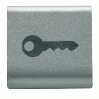 INTERCHANGEABLE BUTTON KEY - 22X22mm - KEY - TITANIUM - CHORUS