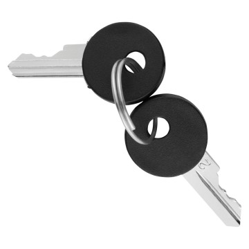 Set of 2 keys for command devices